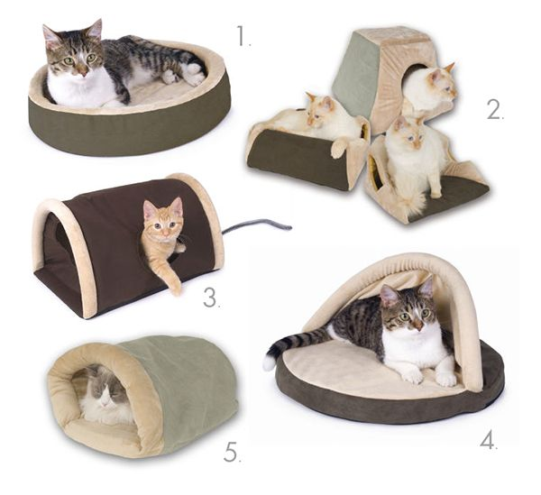 If your cat tries to sleep on your head or stove during the spring/fall/winter months like mine does...this is a good solution!  Heated Cat Beds To Keep Kitty Cozy