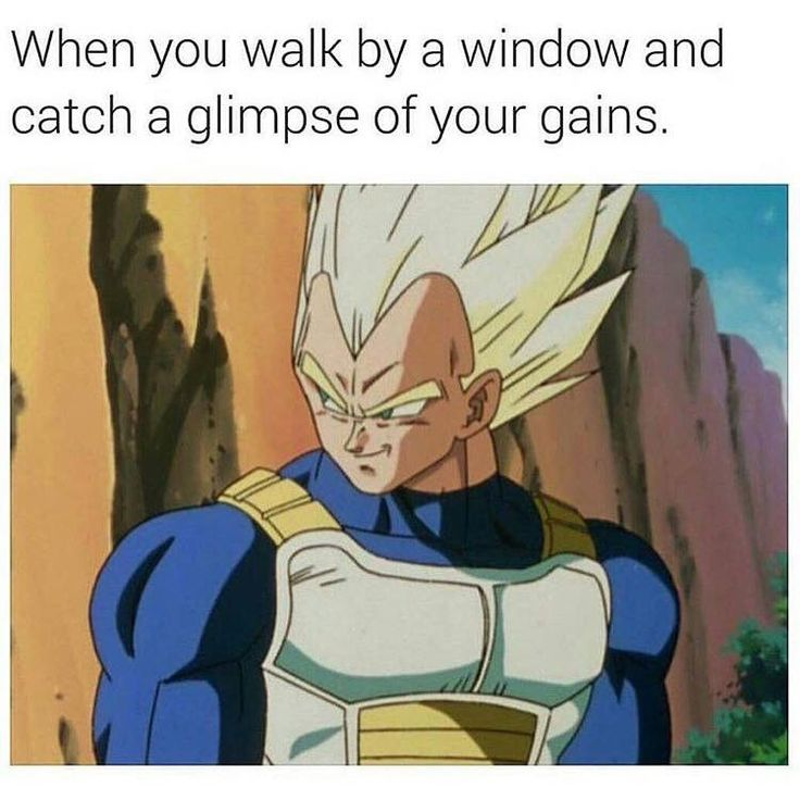 Funny Dragon Ball Z Memes : Best images about dragonball z memes on pinterest