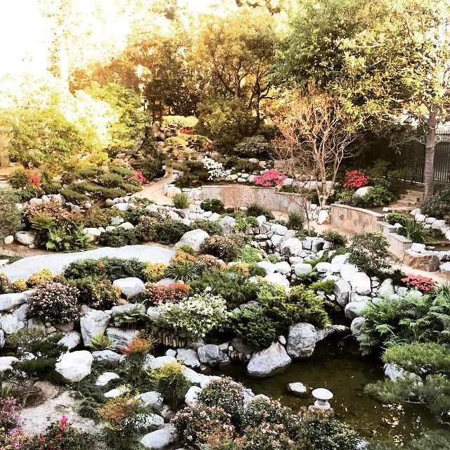 James Irvine Japanese Garden At The JACC In Los Angeles, CA   Bosco  Recommendation