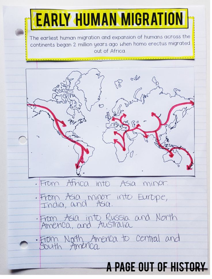 Early Humans   Lesson Plans   World History   Social Studies   Stone Age   Cave Painting   High School   Middle School   Interactive Notebook   Unit   Activities