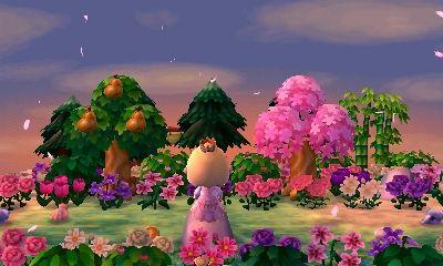 Miiverse - Communauté Animal Crossing: New Leaf | Nintendo