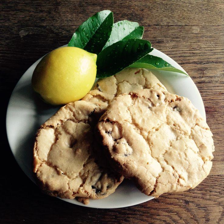 Lemon Chocolate Chip Cookies - By Lauren