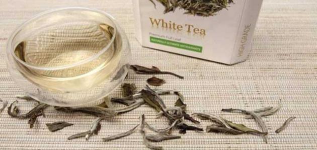 فوائد الشاي الابيض للبشرة والجسم والتنحيف وتوضيح إضرارة Tea White Tea Place Card Holders