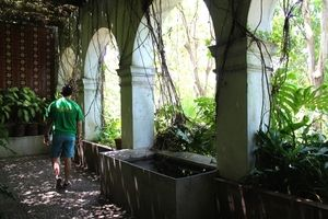 Botanic garden at the Hacienda de Nogueras. #colima #mexico #travel #architecture #nature #hacienda
