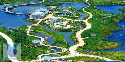 http://tourdulichhongkong.net/cong-vien-sinh-thai-hong-kong-wetland-pn.html