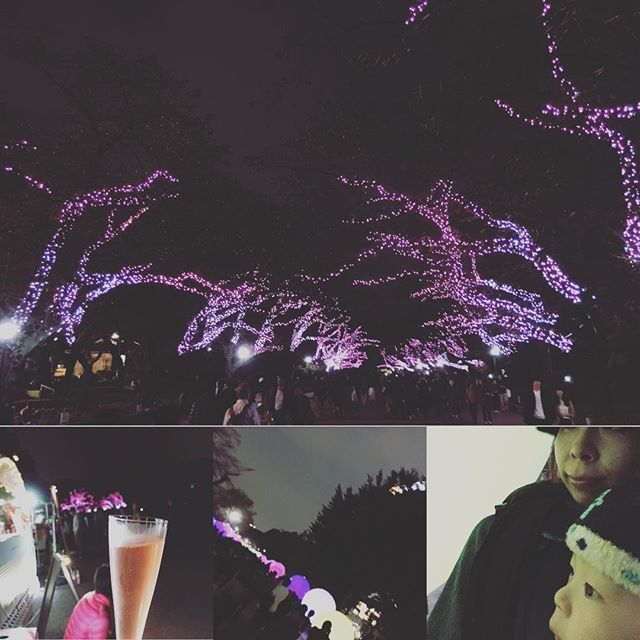 【hana_5521】さんのInstagramをピンしています。 《ちょっと早い桜❤️ #上野#上野公園 #上野不忍池 #チームラボ #チームラボボール #桜#息子が寝た隙に#シャンパン#初めての夜のお出掛け》