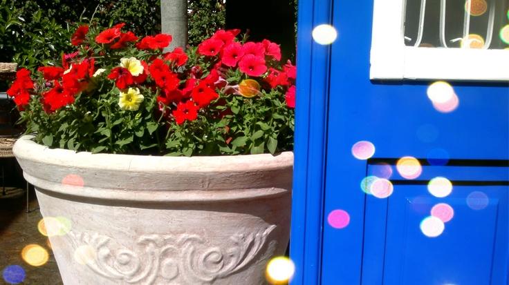 May at Armata Hotel Spetses