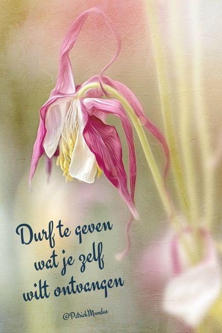 Durf te geven wat je zelf wilt ontvangen...