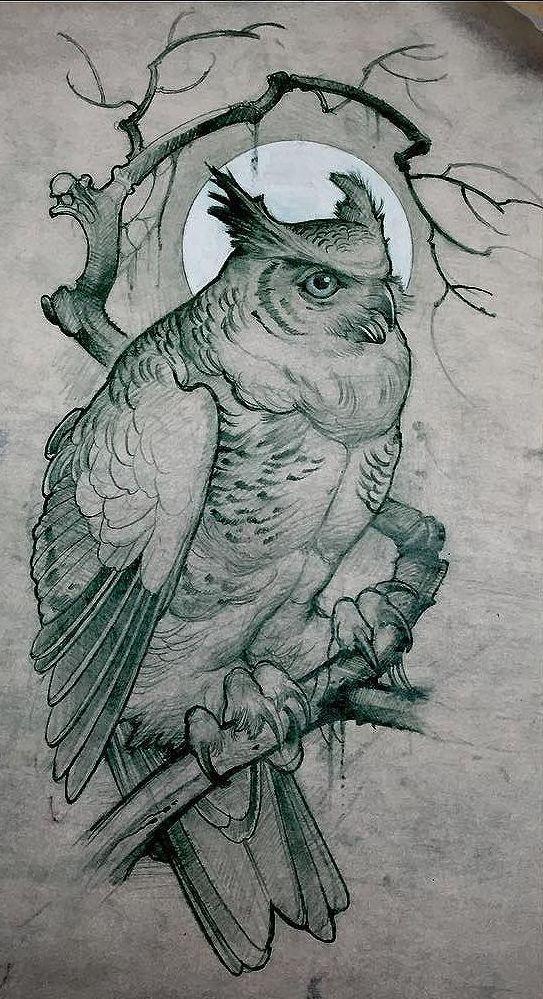 Эскиз татуировки совы на ветке