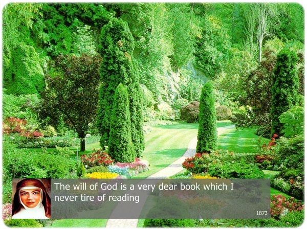 The will of God is  very dear book which I never tire of reading