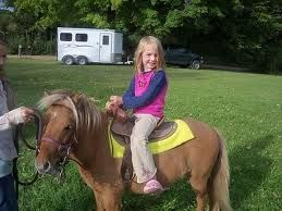 Pony Rides - Rent now for events and parties - also petting zoo rentals   Orange County - San Clemente - Huntington Beach - Irving - Santa Ana - Anaheim - CA