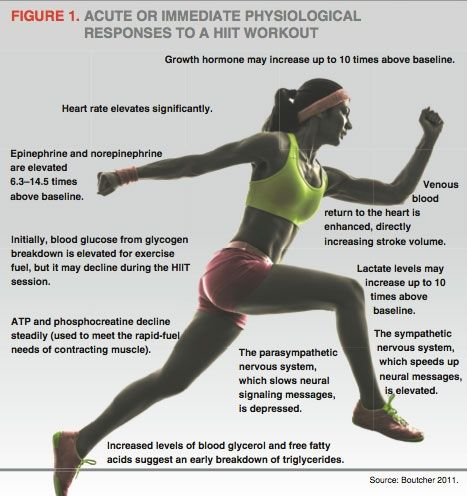 the physiology of fitness the body s Physiology of fitness in today's lesson we discussed cardiovascular responses to acute exercises by increasing our heart rate our body begins to supply.