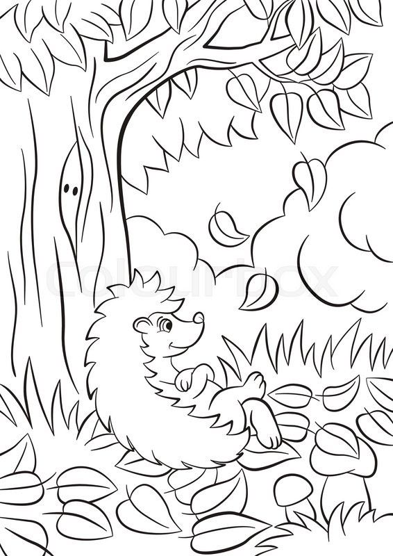 Stock Vector Of Coloring Pages Little Cute Kind Hedgehog Sits Near The Tree Its Autumn The Leaves Fall From Igel Ausmalbild Malvorlagen Malvorlagen Herbst