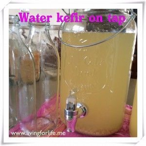 How to do continuous ferment of water kefir. http://livingforlife.me/…/12/22/water-kefir-continuous-brew/