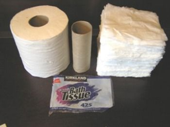 Toilet Paper Surface Area and Volume