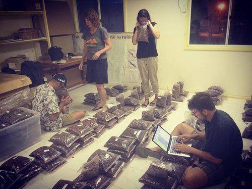 Solomon Islands Chocolate Week — Dick Taylor Craft Chocolate