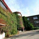 Liege University. Liege, Belgium. Abandoned & being overtaken by ivy.