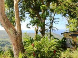 GITES CHARMES SUR LES HAUTEUR D'ACOMAT - Location Bungalow #Guadeloupe #Abymes