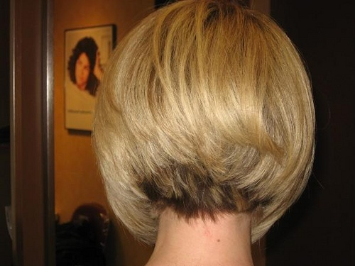 Short Hair Style-back View