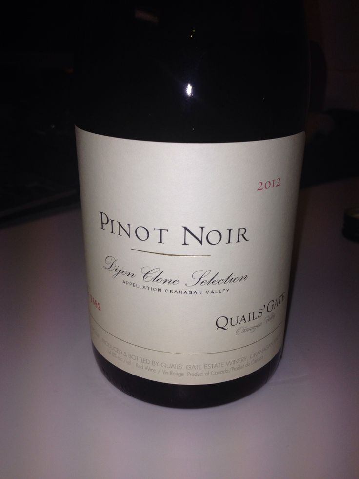 Lovely PInot w Nikki Florian and Caylee at the source...