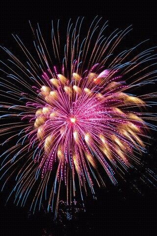 in NOVEMBER i will go to our local fireworks display even if it's pouring down with rain, like it usually is!
