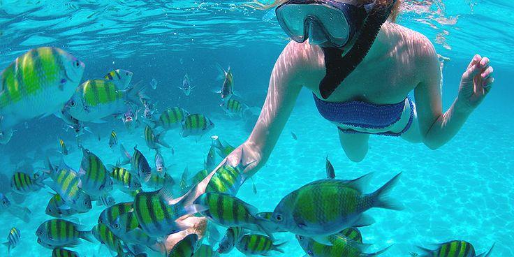 Snorkeling @ Fuerteventura