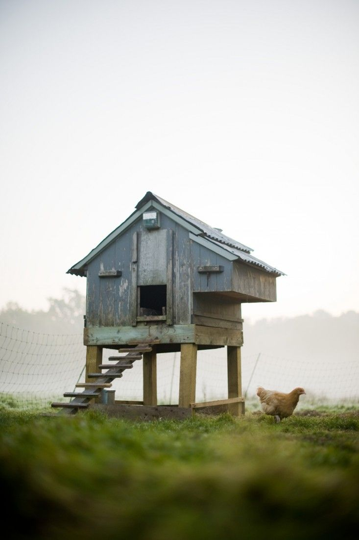 cosy designs for chicken houses. Garden Visit  Camera Ready in the English Countryside at Walnuts Farm 255 best Cool Coops images on Pinterest Chicken coops Backyard
