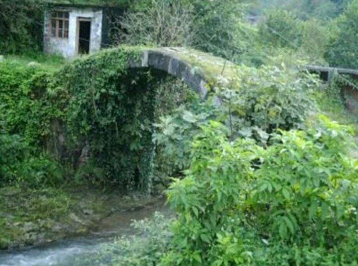 Bridge-Yoldere köyü köprüsü-Constructive: Unknown-Built year: 18th century-Hopa-Artvin