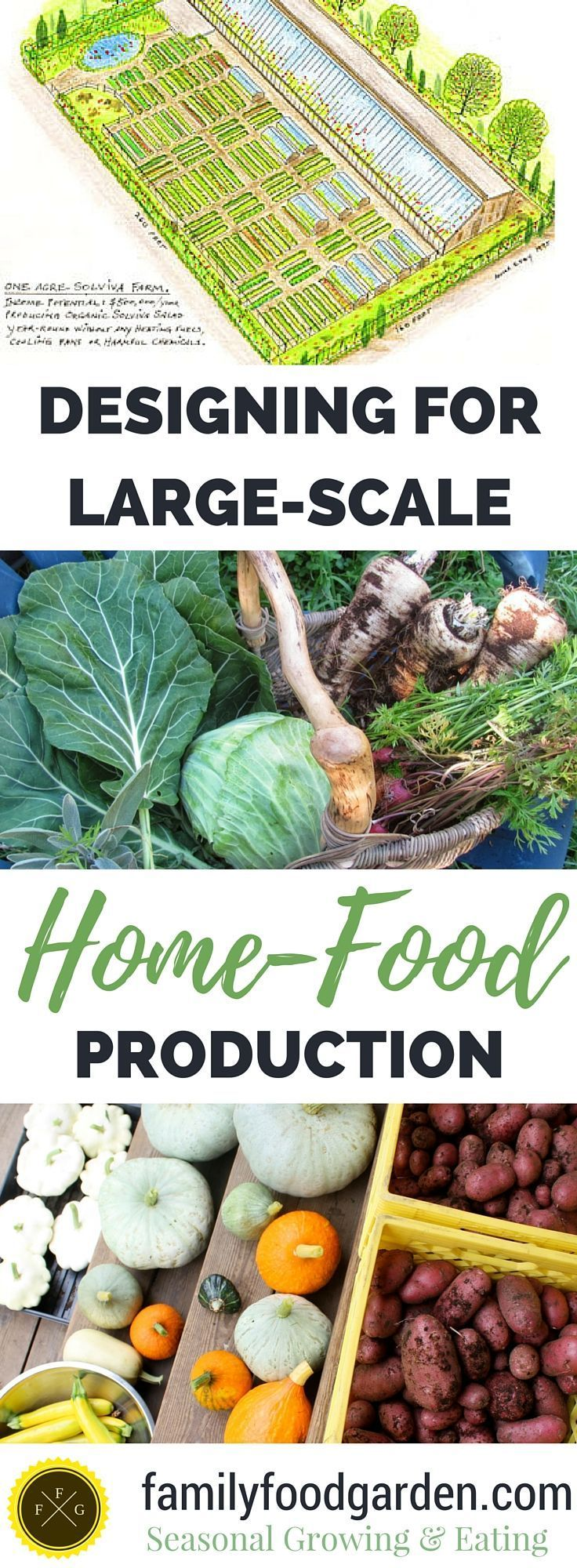 Achieving large-scale food production by growing all of your fruits & vegetables on 1 acre #hydroponicgardening