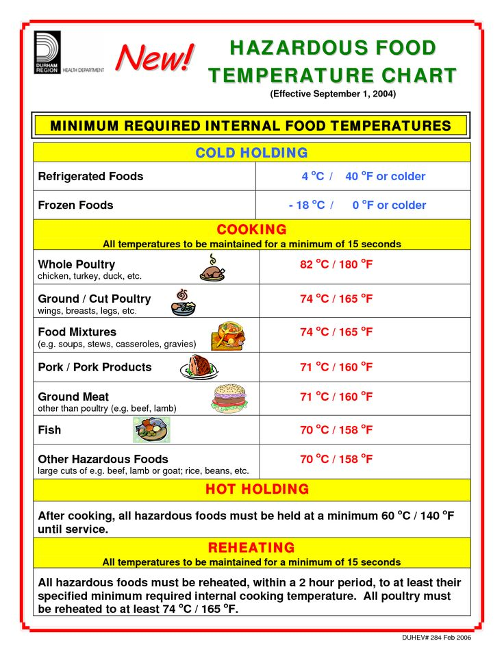 Best Refrigerator Temperature For Food