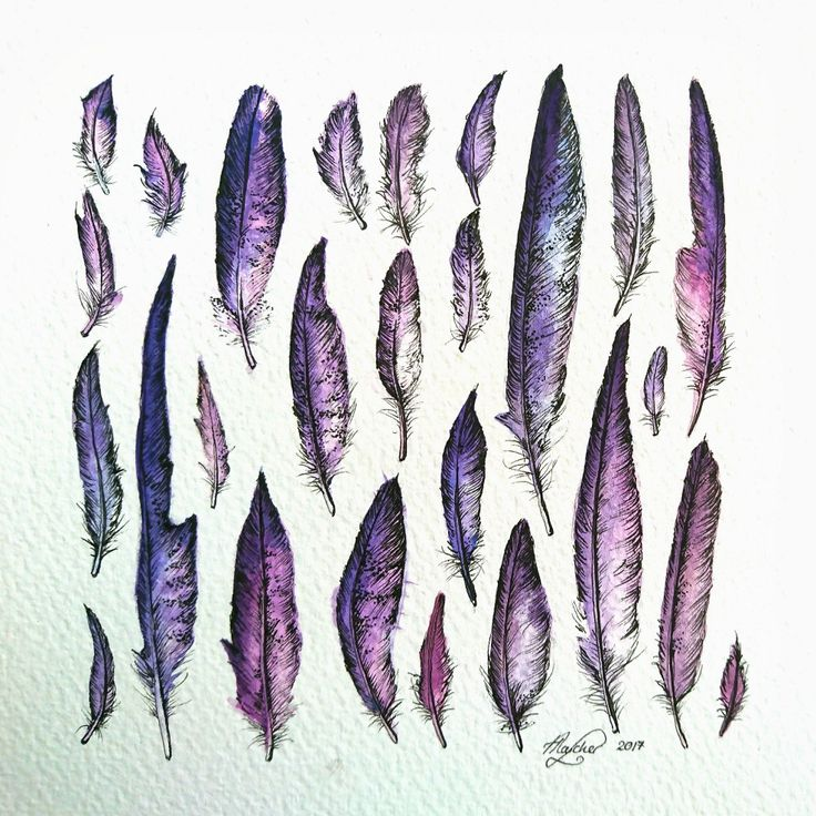 Occamy Feather Study. Watercolour and Ink on Watercolour board. 15cm x 15cm #art #watercolor #occamy #feather #fantasticbeastsandwheretofindthem