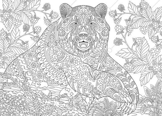 Coloring Pages For Adults Grizzly Bear Adult Coloring