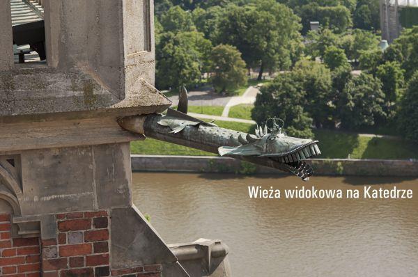 W słoneczną niedzielę wybraliśmy się na wieżę widokową na Katedrze. Na wieżę można wjechać windą, do przejścia potem jest już niewiele schodów. Zobaczymyelektrociepłownię i w oddali most rędziński, Kościół Św. Michała, akademiki Kredka i Ołówek i w oddali stadion Olimpijski, Sky Tower,most tumski, most Grunwaldzki, Panoramę Racławicką i...