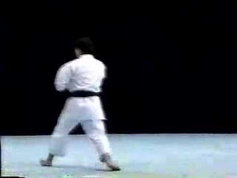 Nipaipo Shito Ryu