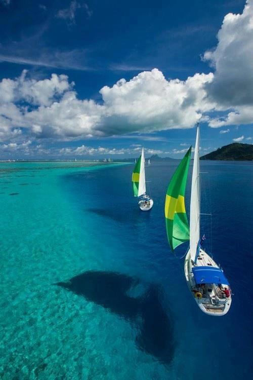 Veleros: Buckets Lists, Frenchpolynesia, Clear Water, Sailboats, French Polynesia, Best Quality, Sea, Sailing Away, Sailing Boats