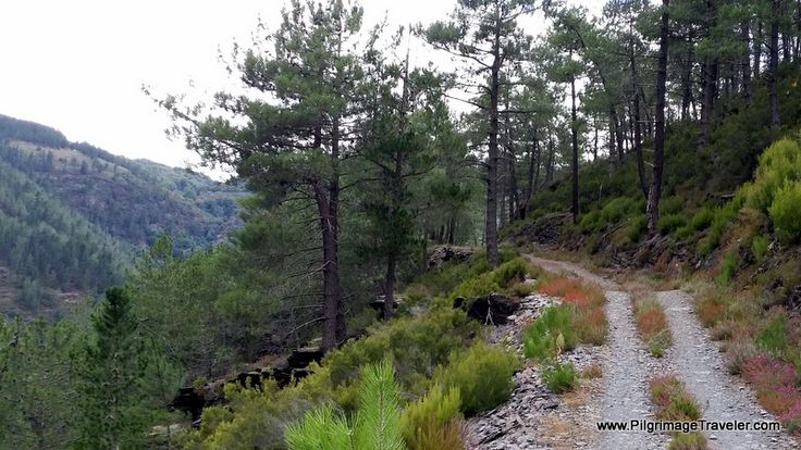 The high gravel road, above the reservoir on the sixth day on the Camino Primitivo, near Grandas de Salime in Asturias, Spain.