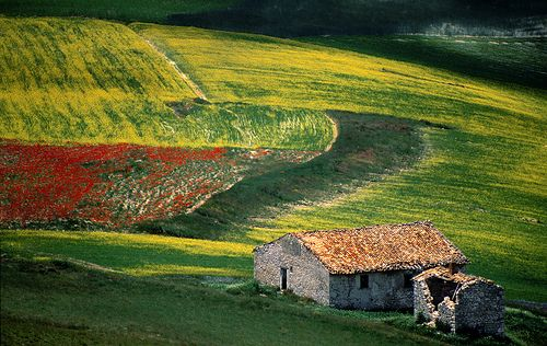...Umbria, ItalyStones Cottages, Farms House, Italian Honeymoons, Stone Cottages, Beautiful Barns, Beautiful Places, Umbria Italy, Stones Barns, Farm Houses