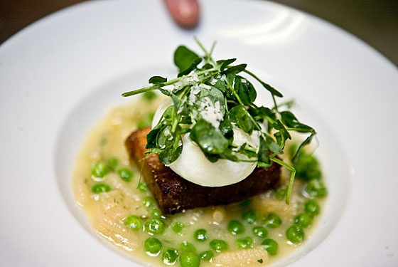 Spaghetti Carbonara With Pork Belly And Fresh Peas Recipes ...