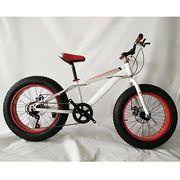 "20"" aluminium alloy snow bike with disc brake cheap price"