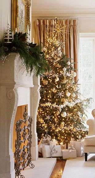 Christmas mantle & tree