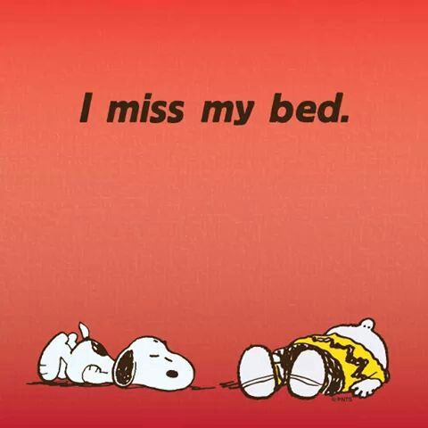 From the moment I get up. I love to sleep. I could stay in bed 24/7