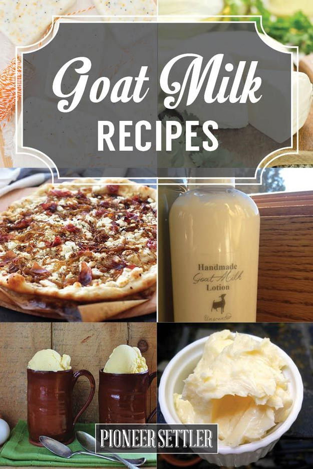 19 Recipes To Make With Goats Milk | Fun and Delicious Ways to make from goat Milk by Pioneer Settler at http://pioneersettler.com/goat-milk-recipes/