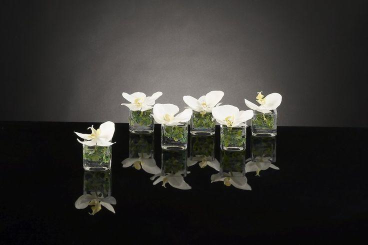 VG NEW TREND Kompozice orchidej
