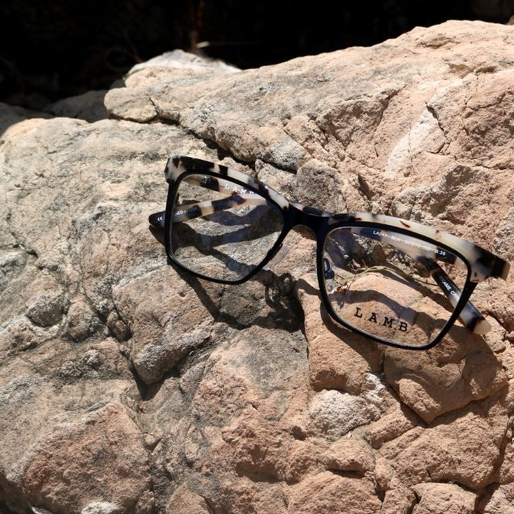LAMB by Gwen Stefani eyewear. Simple, chic, glasses inspired by nature patterns.
