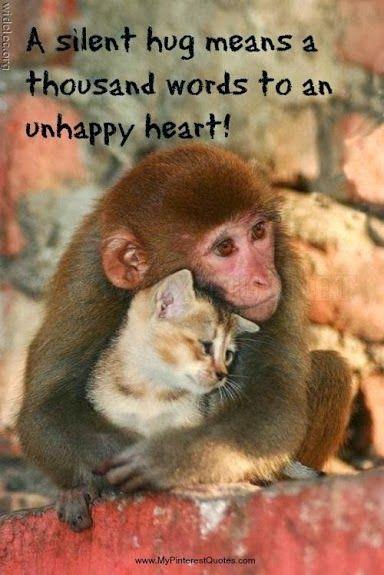 A silent hug means a thousand words to an unhappy heart.