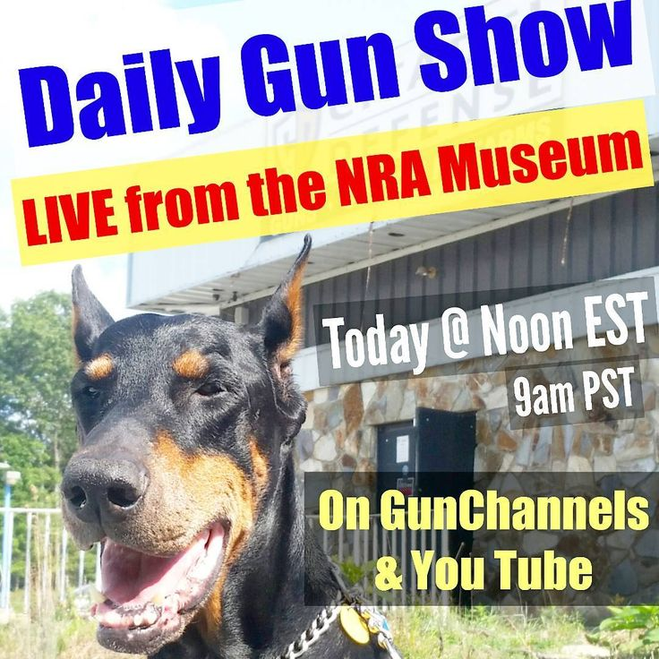 The @DailyGunShow podcast will be LIVE from the NRA Museum today at Noon EST (9am PST)  We talk guns every day.  Three gun topics each day, chosen by our listeners  Daily topics include:  #TacticalQuiz  #GunShopOfTheDay #GunMovieOfTheDay #GunOfTheDay  @DailyGunShow on @GunChannels & You Tube  LIVE from @nramuseums at the @nationalrifleassociation headquarters in Virginia