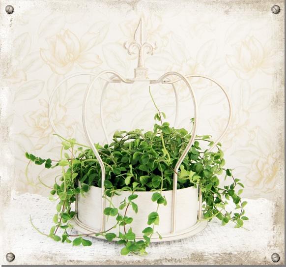 Krona för blomma eller ljus #interior #crown #plant