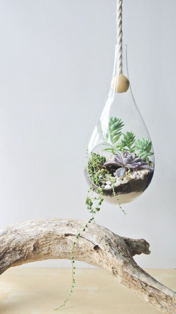 The Modern Dewdrop Hanging Planter by the ZenSucculent: Etsy Blog, Hanging Terrarium, Dewdrop Hanging, Gardens Idea, Air Plants, Diy'S Homes Decoration, Hanging Planters, Blog Features, Modern Dewdrop