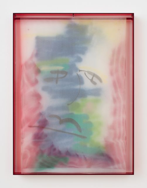 Available for sale from Rachel Uffner Gallery, Strauss Bourque-LaFrance, Big Nose, Bad Day (2014), Plexiglas, plastic mesh and spray enamel, 40 × 30 × 2 1/4 in