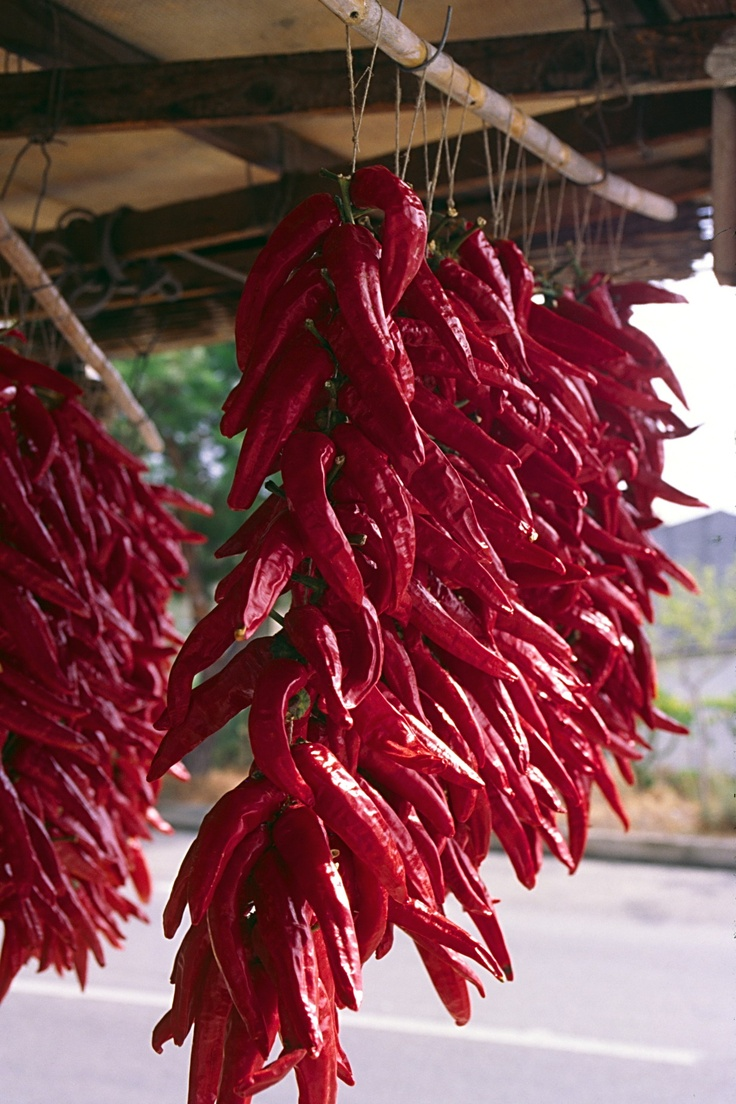 Peperoni di Senise. #Basilicata #Italy tastes you can find around www.argonauti.com